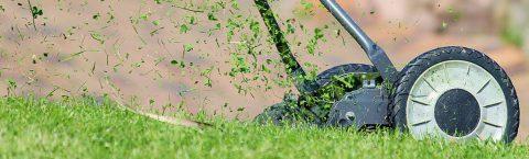Rasen- und Gartenpflege, <br>soweit Grünanlage vorhanden